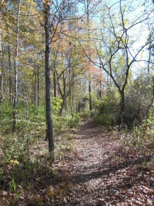 Great Bend Trail Fall 2014